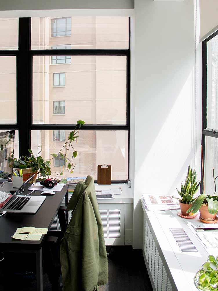 Office Space Decorated with Potted Plants.
