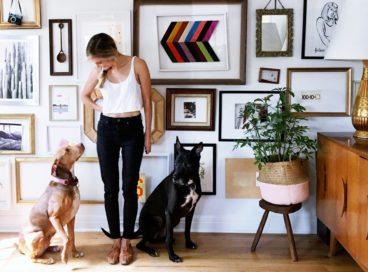 Designers Dish on Pet-Friendly Decorating