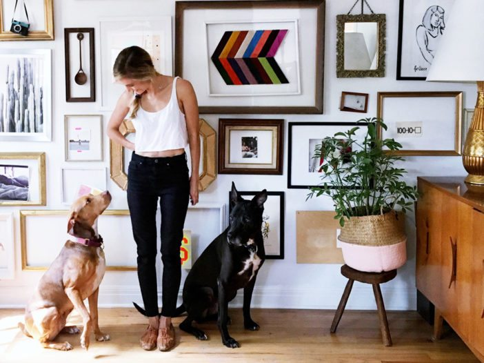 Designers Dish on Pet-Friendly Decorating